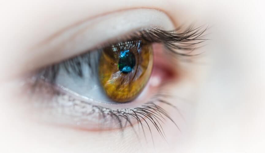 黒目がちな目の写真